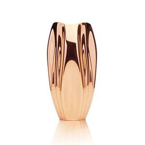 Vaso-Holaria-Ascidia-Bronze