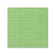 Guardanapo-Papper-Design-de-Papel-33x33-Vichy-Verde