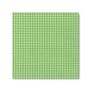 Guardanapo-Papper-Design-de-Papel-33x33-Vichy-Verde